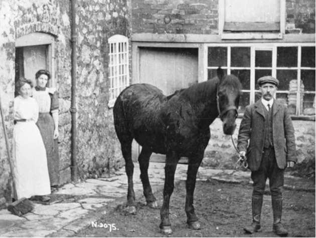 Askerswell inhabitants and horse